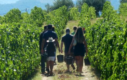 Douro Valley 7 day Tour