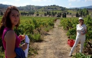 ITALY – SARDINIA (Dorgali) Wine Tour - 3/4-days