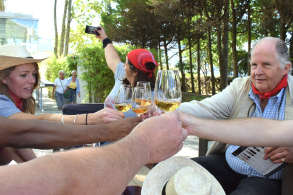 Douro Valley vineyard experience