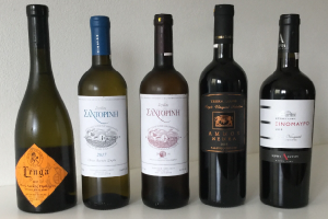 Wine tasting at Wines and Tours