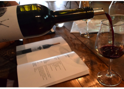 Douro Wine Region Tour & Tasting